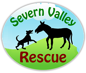 Severn Valley Rescue